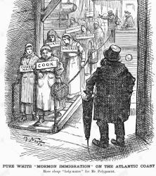 The Perpetual Immigration Fund was indentured servitude Poor European women converted to Mormonism to receive passage to America at high interest rates Girls often arrived deep in debt with few skills They