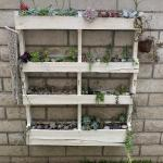 Succulent Pallet Planter Finally Finished Planting It What Do You Think Succulents