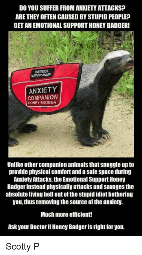 Emotional support animal : funny