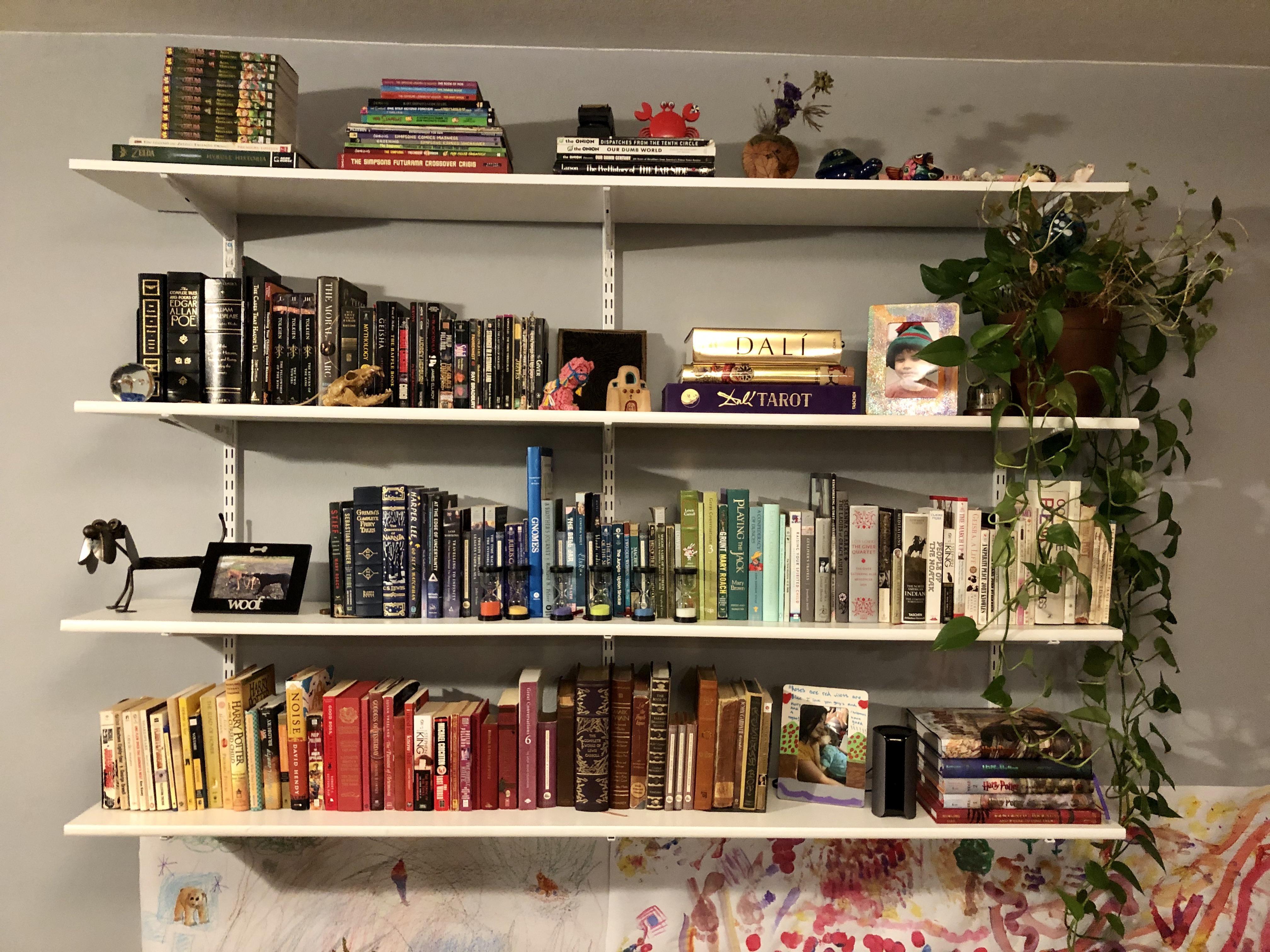 Color coordinated ? : bookshelf
