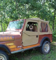 my dog loves to get into my old jeep cj7 thinking that i will take her for a ride her name is cj  [ 1920 x 1280 Pixel ]