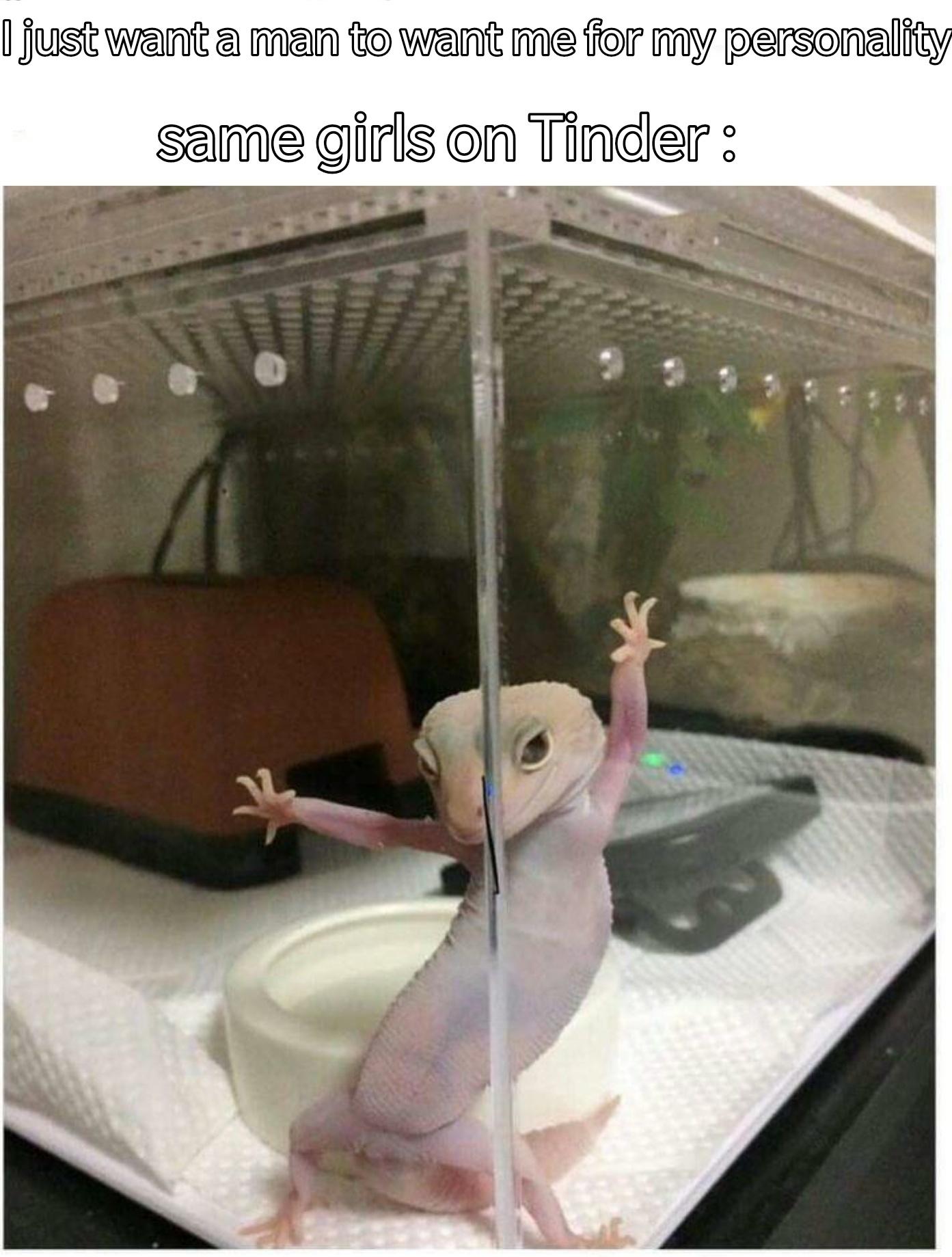 Fwb Meme : Hookups!, Don't, Perverts!, Memes