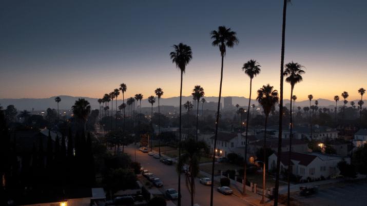 Los Angeles Palms at Dawn [3840 x 2160]