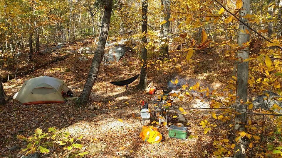 my campsite jenny jump