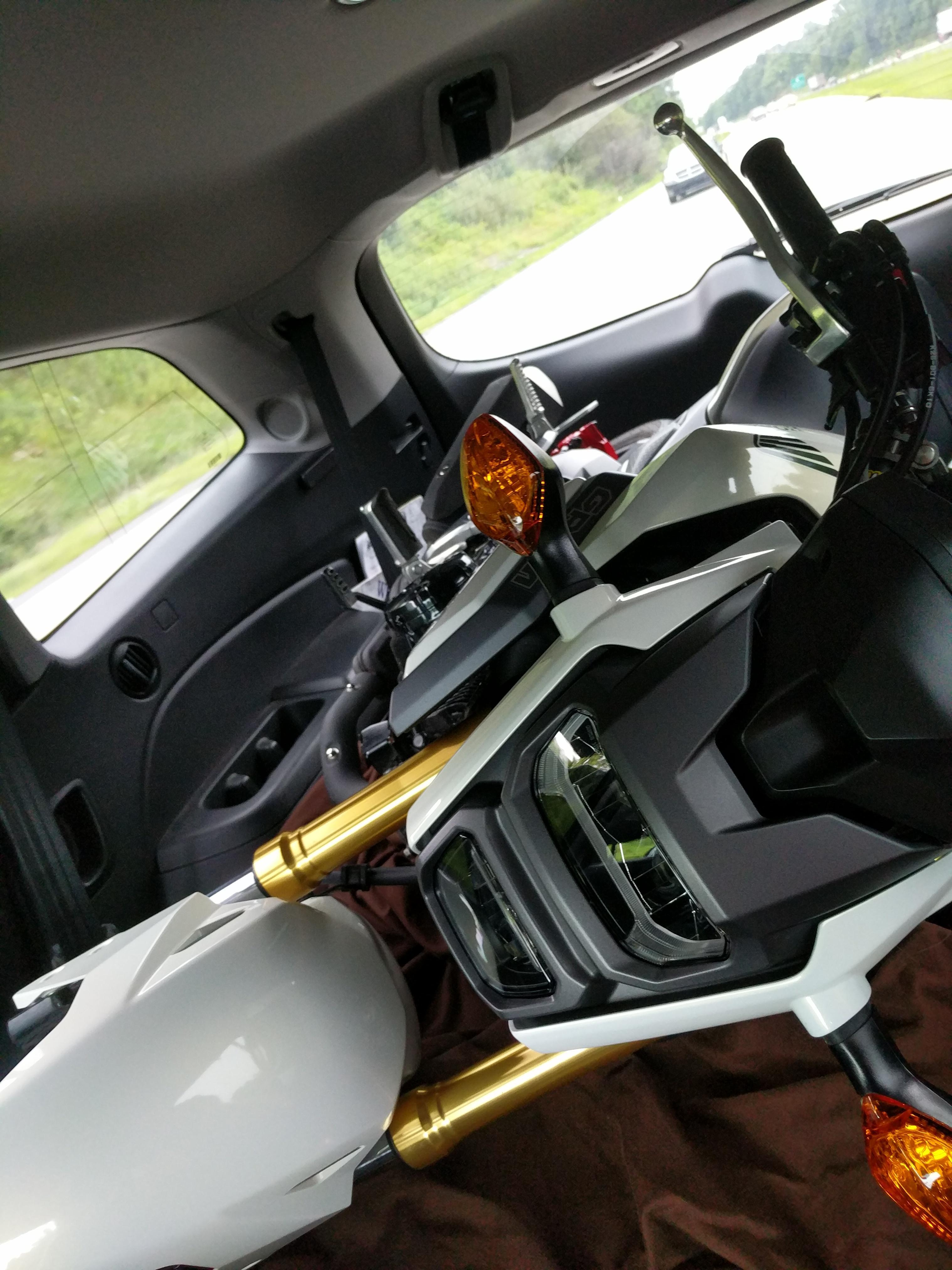 Used Honda Grom For Sale Craigslist : honda, craigslist, Moment,, Poorly, Transported, Craigslist, Snag., Hondagrom