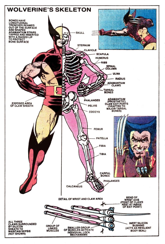 medium resolution of comicsinteresting diagram