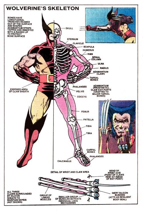 small resolution of comicsinteresting diagram