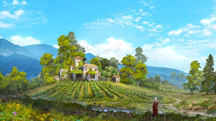 [2560×1440] Little vineyard.