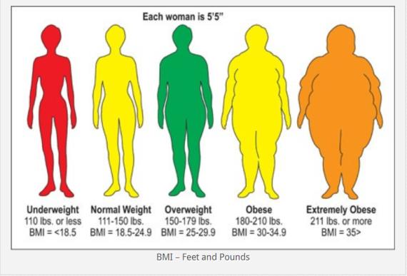 ผลการค้นหารูปภาพสำหรับ overweight