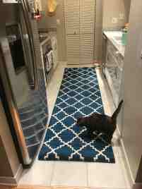 Is This Runner Too Big For My Galley Kitchen Also Any Thoughts About The Animal Food Bowls I Was Thinking To Try Raised Ones Thank You Homedecorating