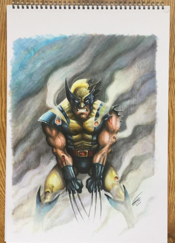 Wolverine Drew In Copic Marker And Prismacolor Pencil Drawing