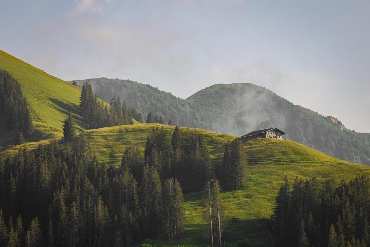 Grassy mountains somewhere in Austria [OC](5472×3648)