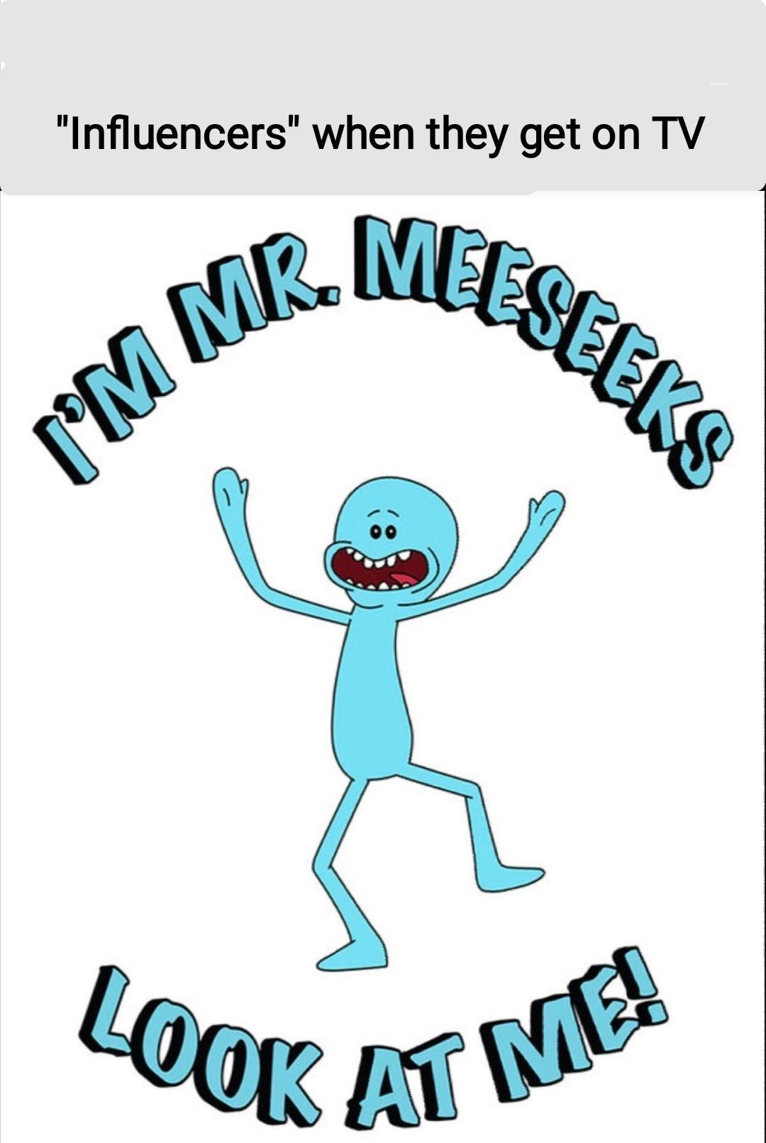 Mr Meeseeks Meme : meeseeks, Mr.meeseeks, Memes