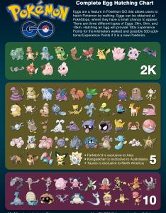 News the complete egg hatching chart  personal project will be updated whenever new pokemon arrive also rh reddit