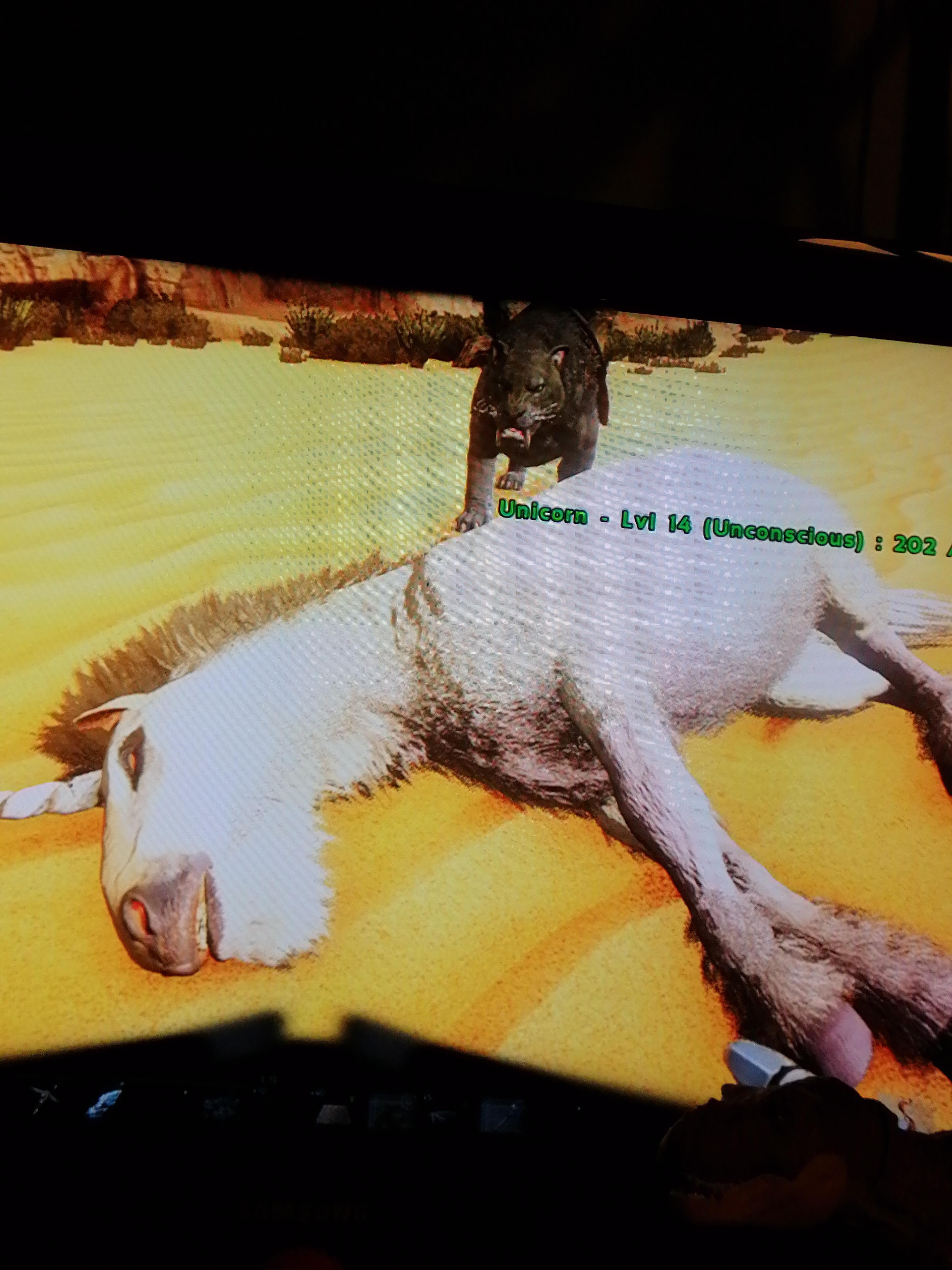 Ark Unicorn Taming : unicorn, taming, Unicorn?
