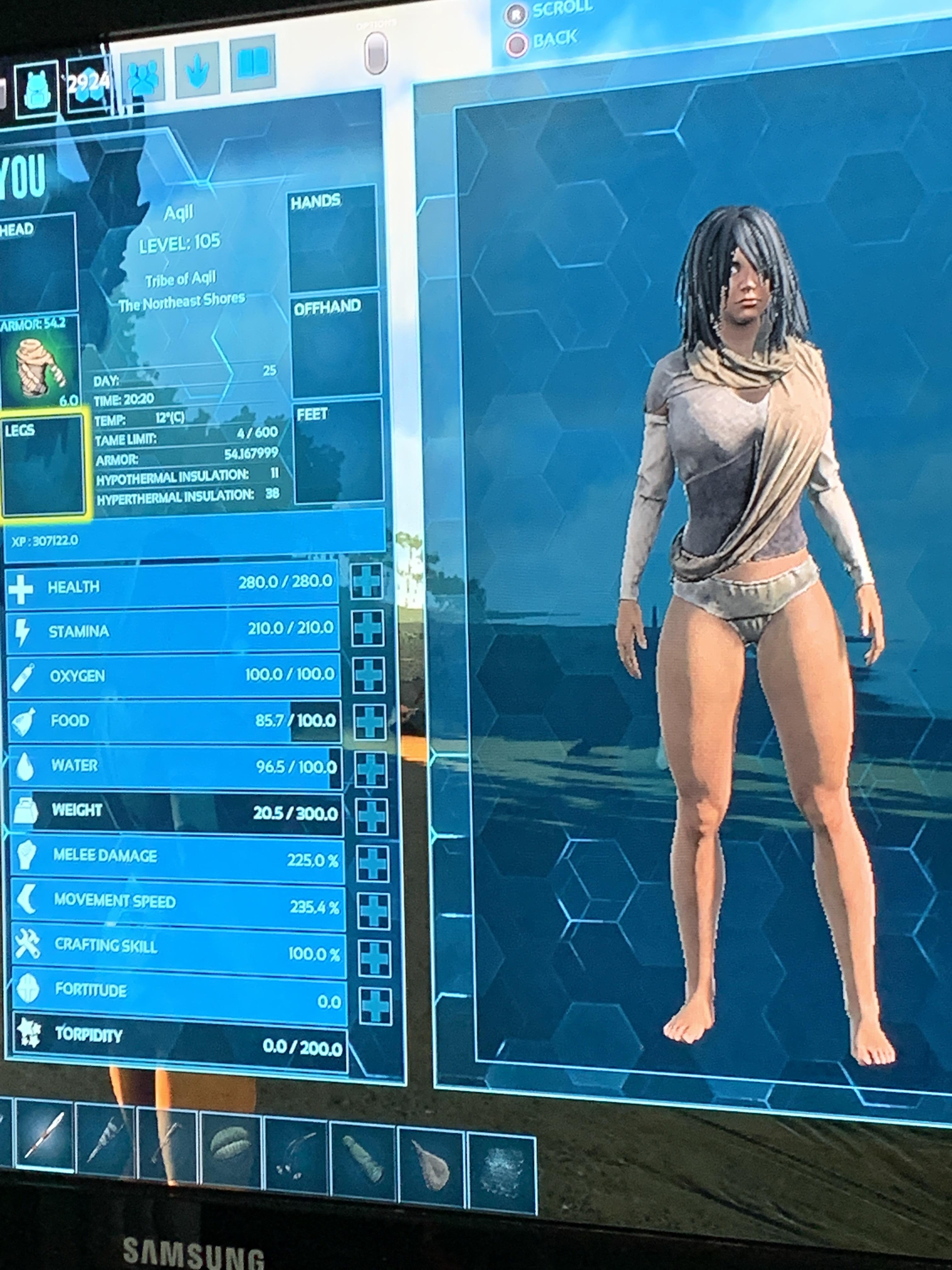 Desert Clothes Ark : desert, clothes, Desert, Clothing, Right..?, Suggestions, #wildcard, Arkps4