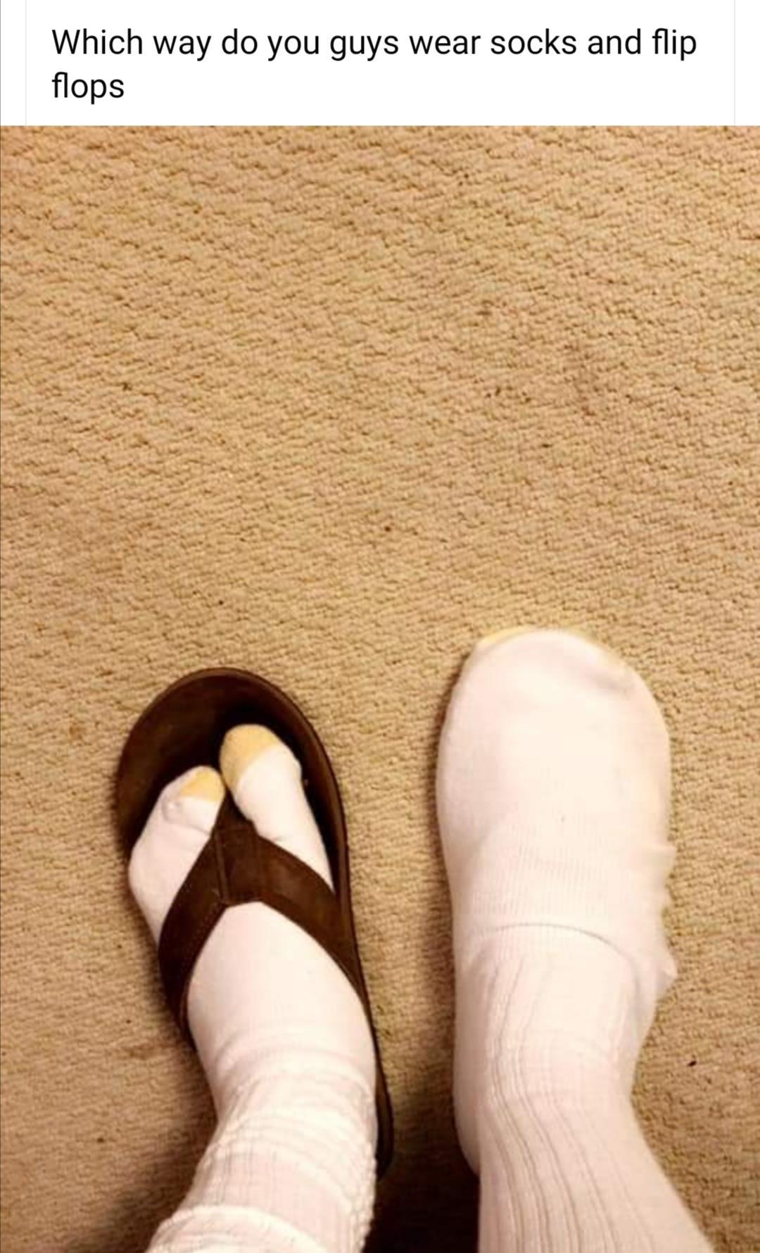 Socks And Sandals Meme : socks, sandals, Kvaila, Traukinys, Atsipalaiduoti, Socks, Sandals, Florencepoetssociety.org