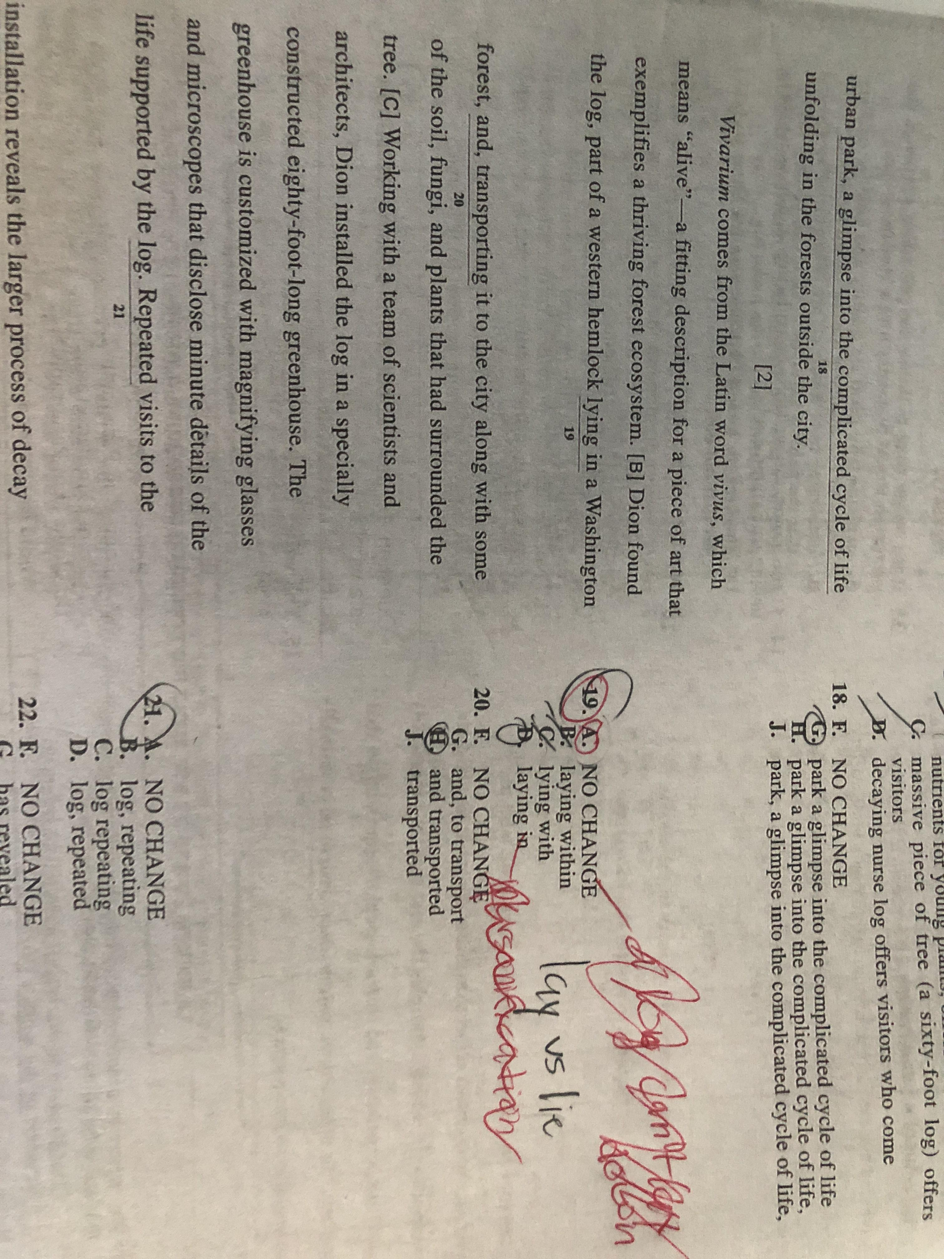 Help Explanation For Number 19 Lay Vs Lie Act