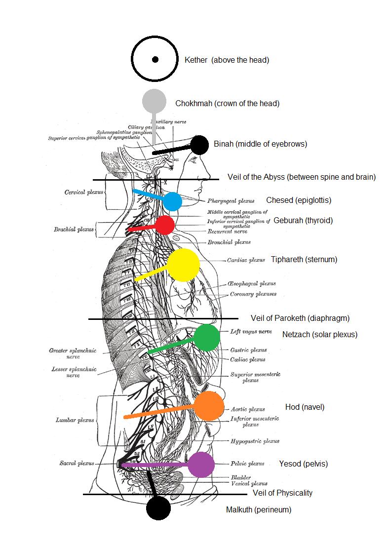 medium resolution of sephiroth as chakras my take on it