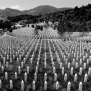 Today Marks 23 Years Since The Srebrenica Genocide In
