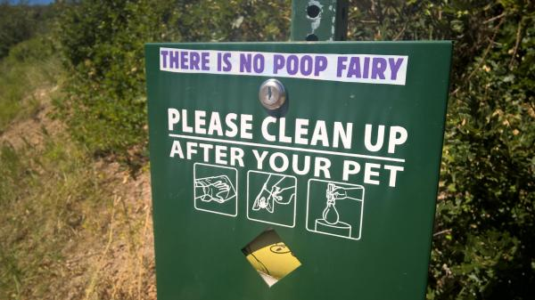 20 Dog Poop Fairy Pictures And Ideas On Meta Networks