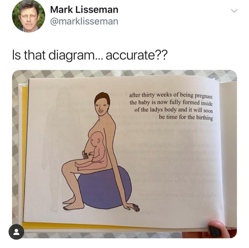 medium resolution of thanks i hate pregnant women