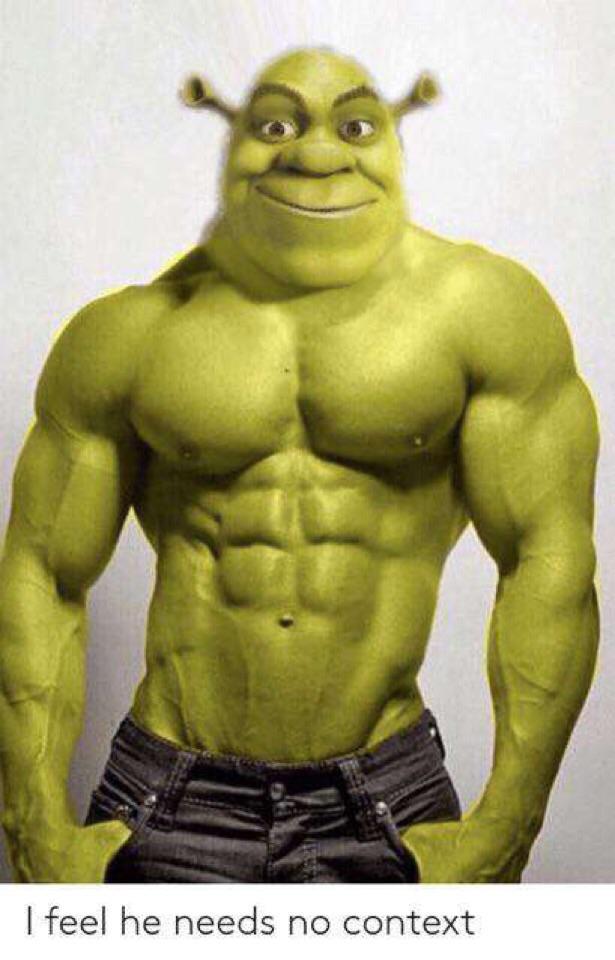 Shrek Pictures Funny : shrek, pictures, funny, SHREK, Funny