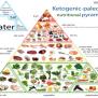 Ketogenic Pyramid Keto Food
