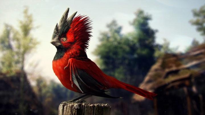 Red spiky bird [2560 x 1440]
