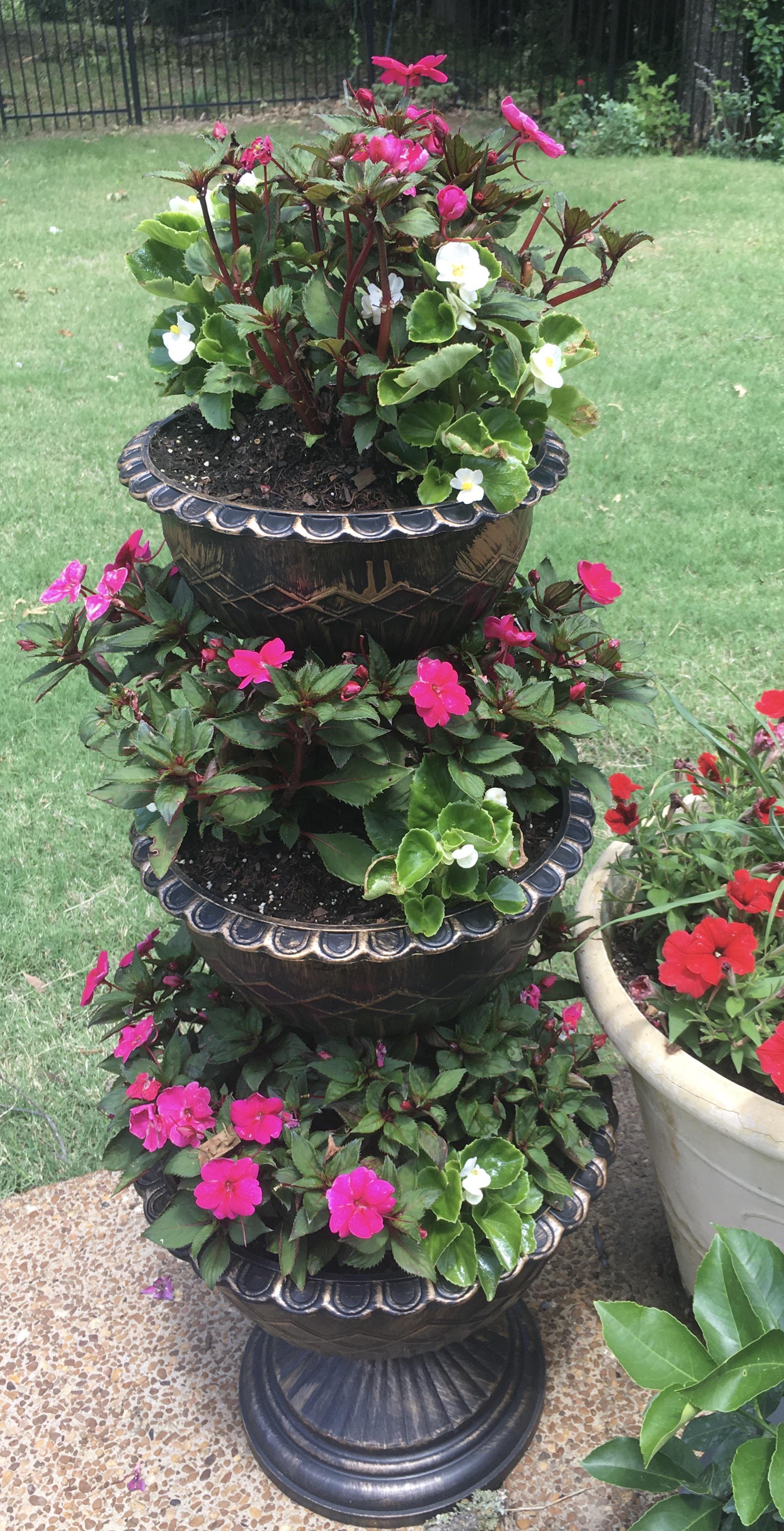 3 Tier Planter Aldi : planter, Three, Tiered, Planter, Looking, Pretty, Good.