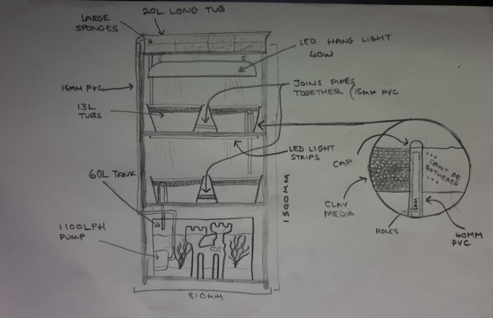 medium resolution of aquaponics