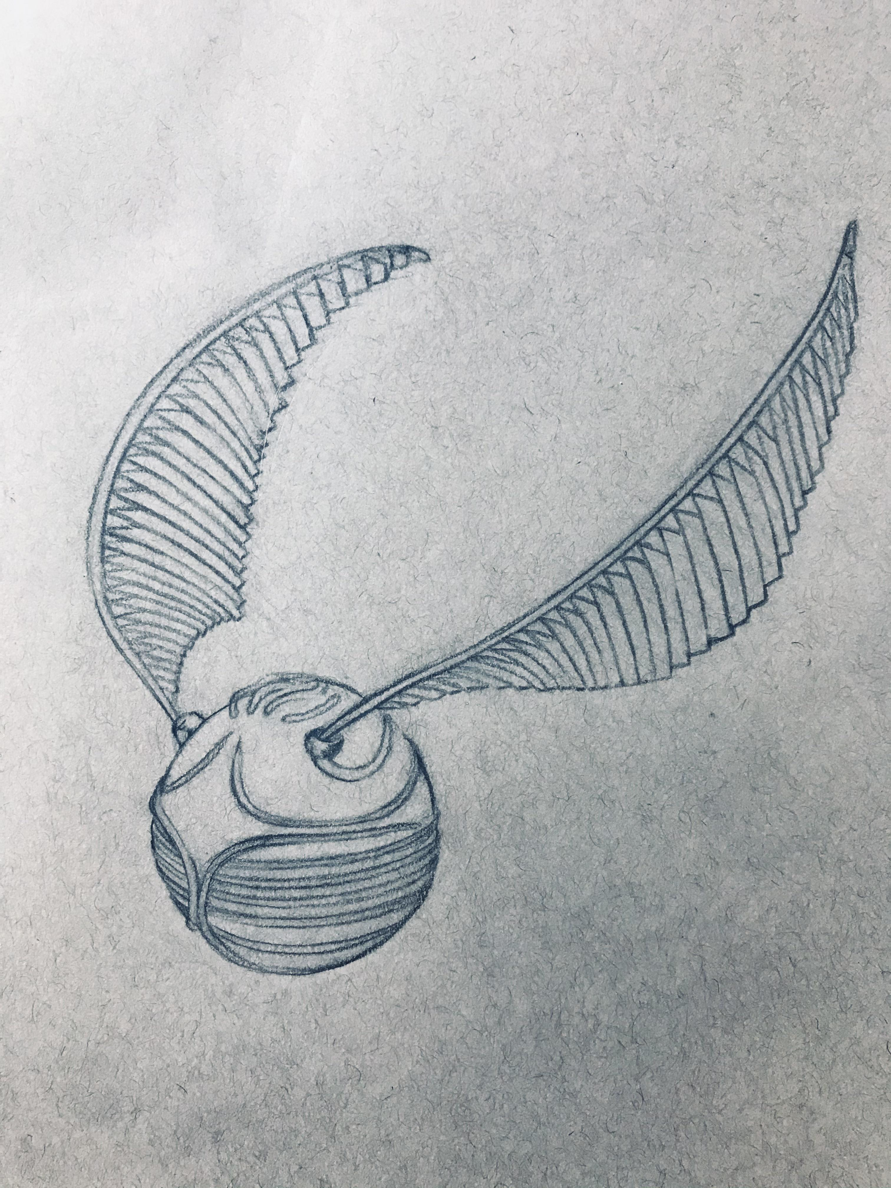 Harry Potter Snitch Drawing : harry, potter, snitch, drawing, Outline, Sketch, Golden, Snitch!, Coloring, Soon,, Enjoy, Update, Done., Harrypotter
