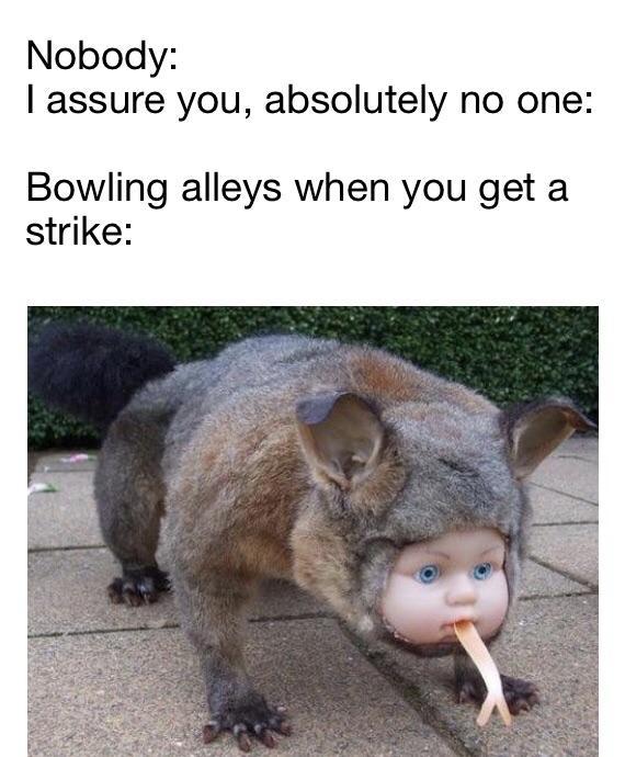 No One Absolutely No One Meme : absolutely, Absolutely, Memes