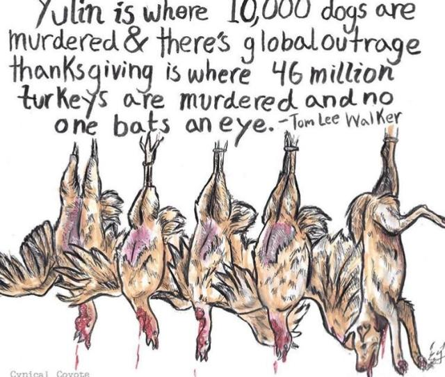 Whats The Difference Between Yulin And Thanksgiving Propaganda