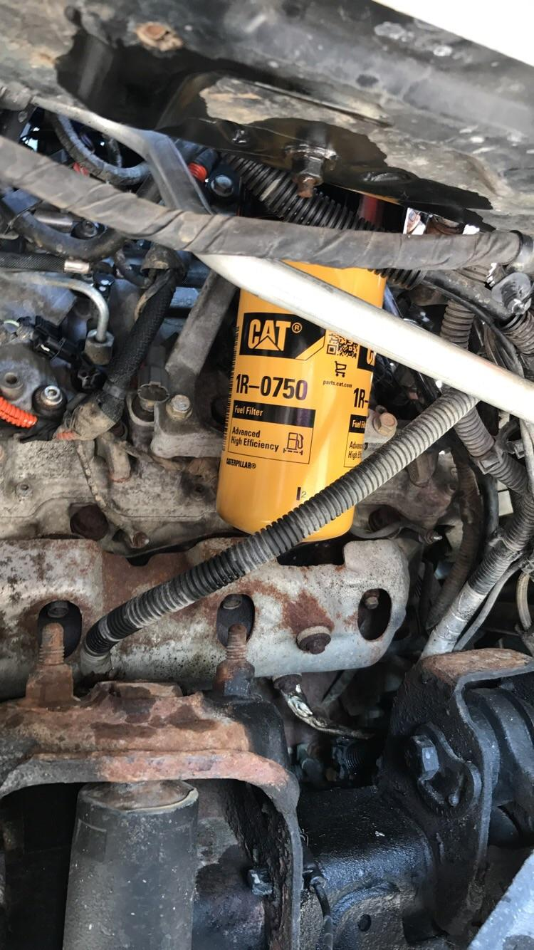 hight resolution of cat fuel filter upgrade on a duramax is a no brainer