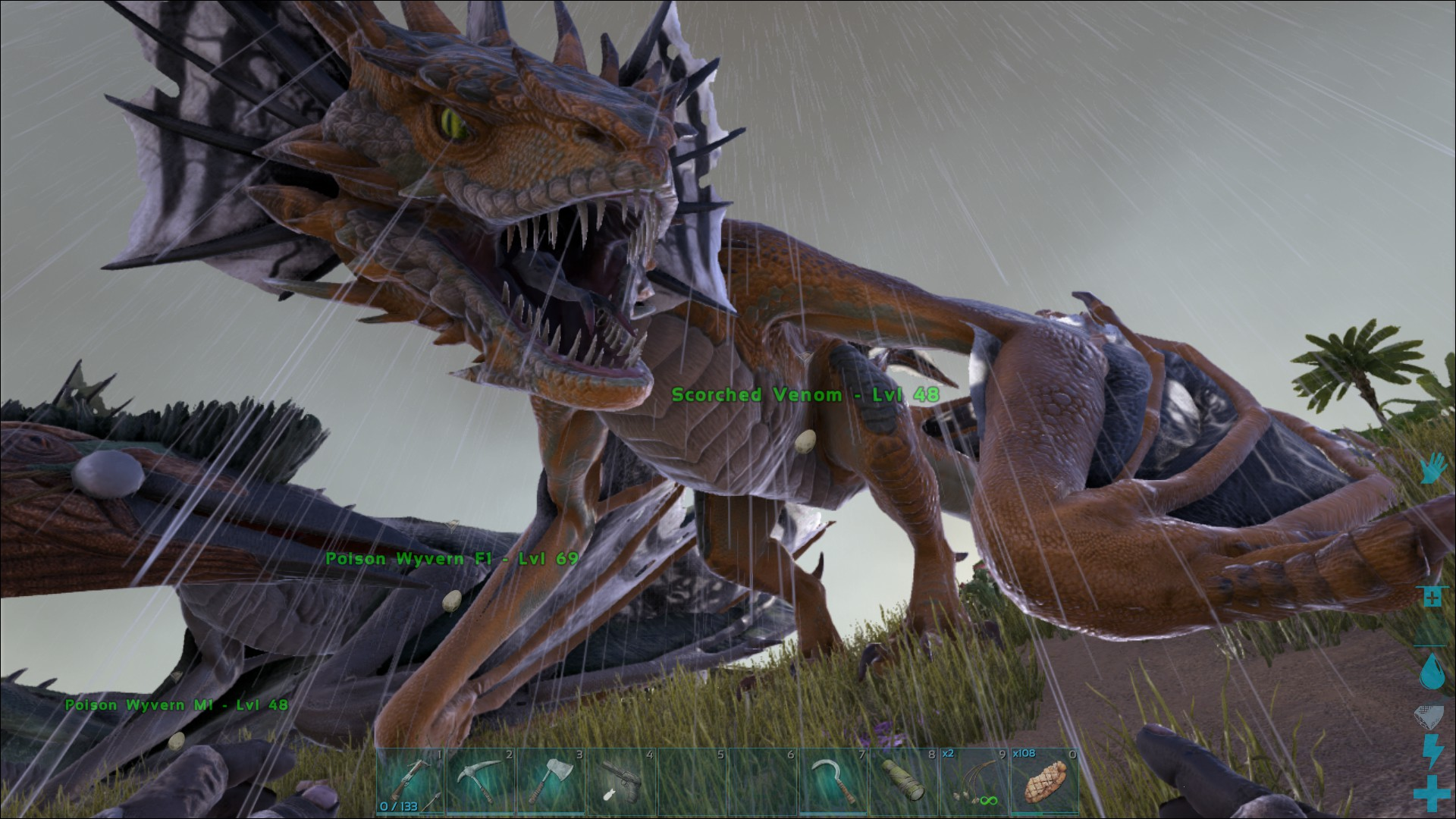 can wyverns hatch with