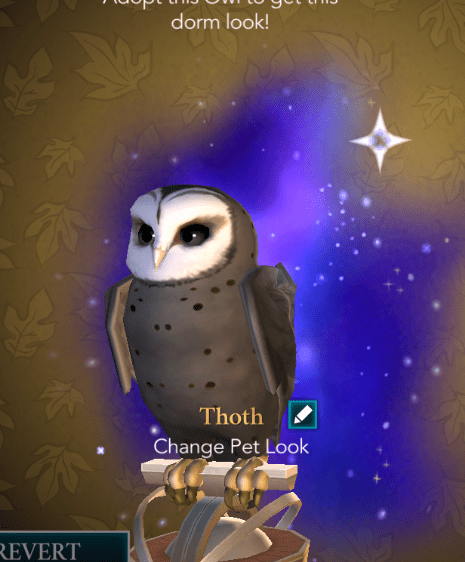 Hogwarts Mystery Owls : hogwarts, mystery, Named, Thoth, (Egyptian, Wisdom,, Magic,, Writing,, Which, Thought, Hogwarts, Starry, Appearance, Didn't