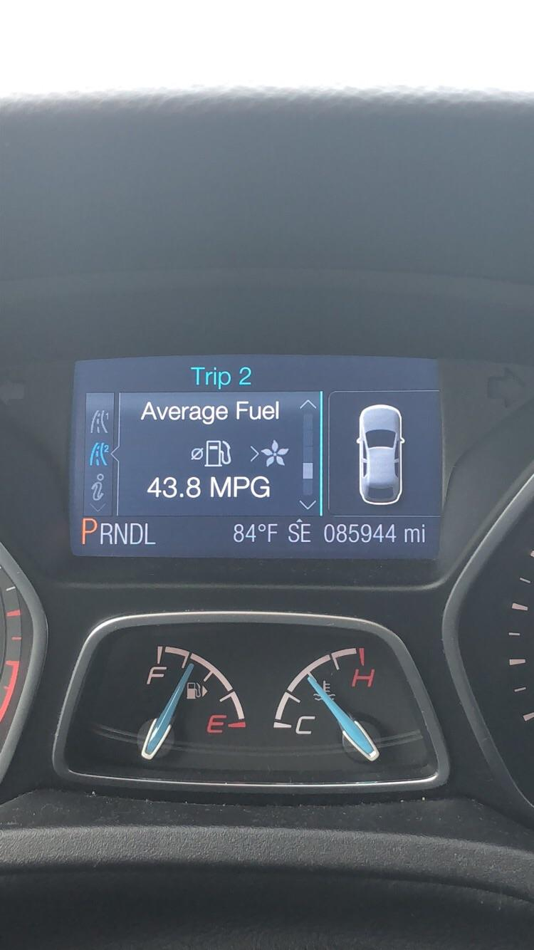 Ford Focus St Mpg : focus, Broke, Record, Driving, College, Today., Miles, Across, Great, Plains, Pushing, FordFocus