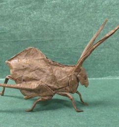origami [ 3150 x 2025 Pixel ]