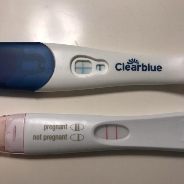 First Response Positive Pregnancy Test Cd 26 - Exploring Mars