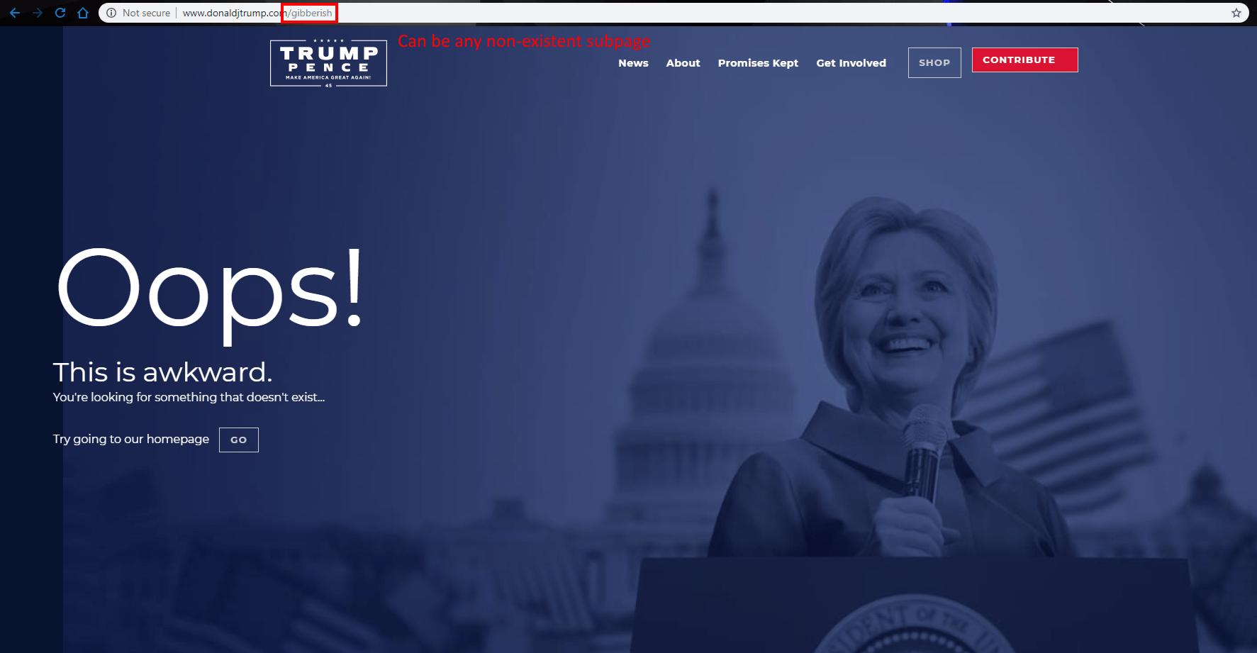 donald trump s 404