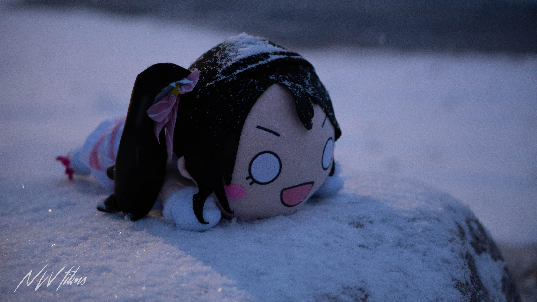 nico goes all snow
