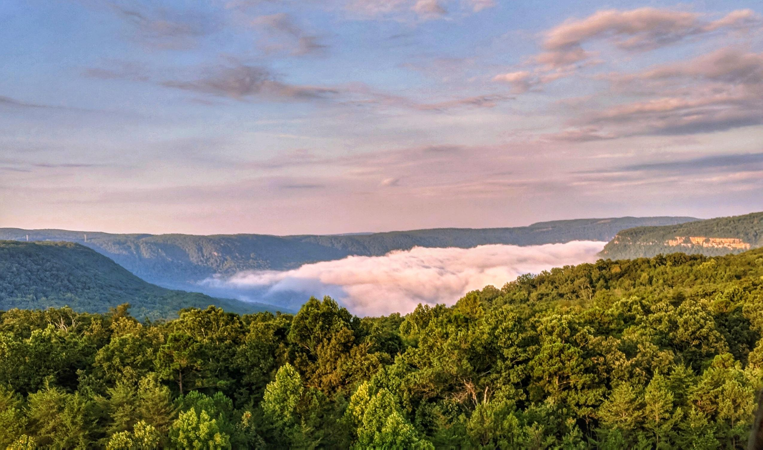 Young raccoons are preyed upon by eagles and large owls. Sunrise Above The Clouds On Raccoon Mountain Chattanooga