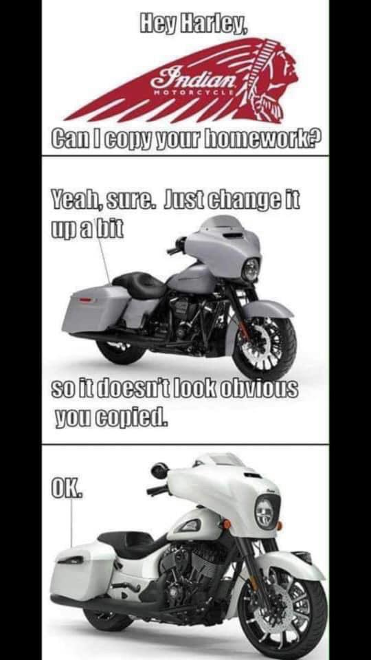 Funny Harley Memes : funny, harley, memes, Memes, Allowed, Here?, Thought, Pretty, Funny., Harley