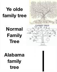 Does your conscience bother you? Sweet Home Alabama Memes