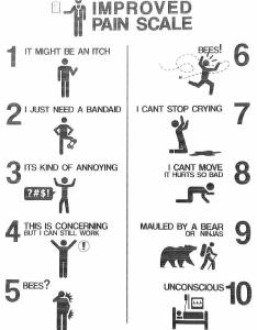 An improved pain scale also funny rh reddit