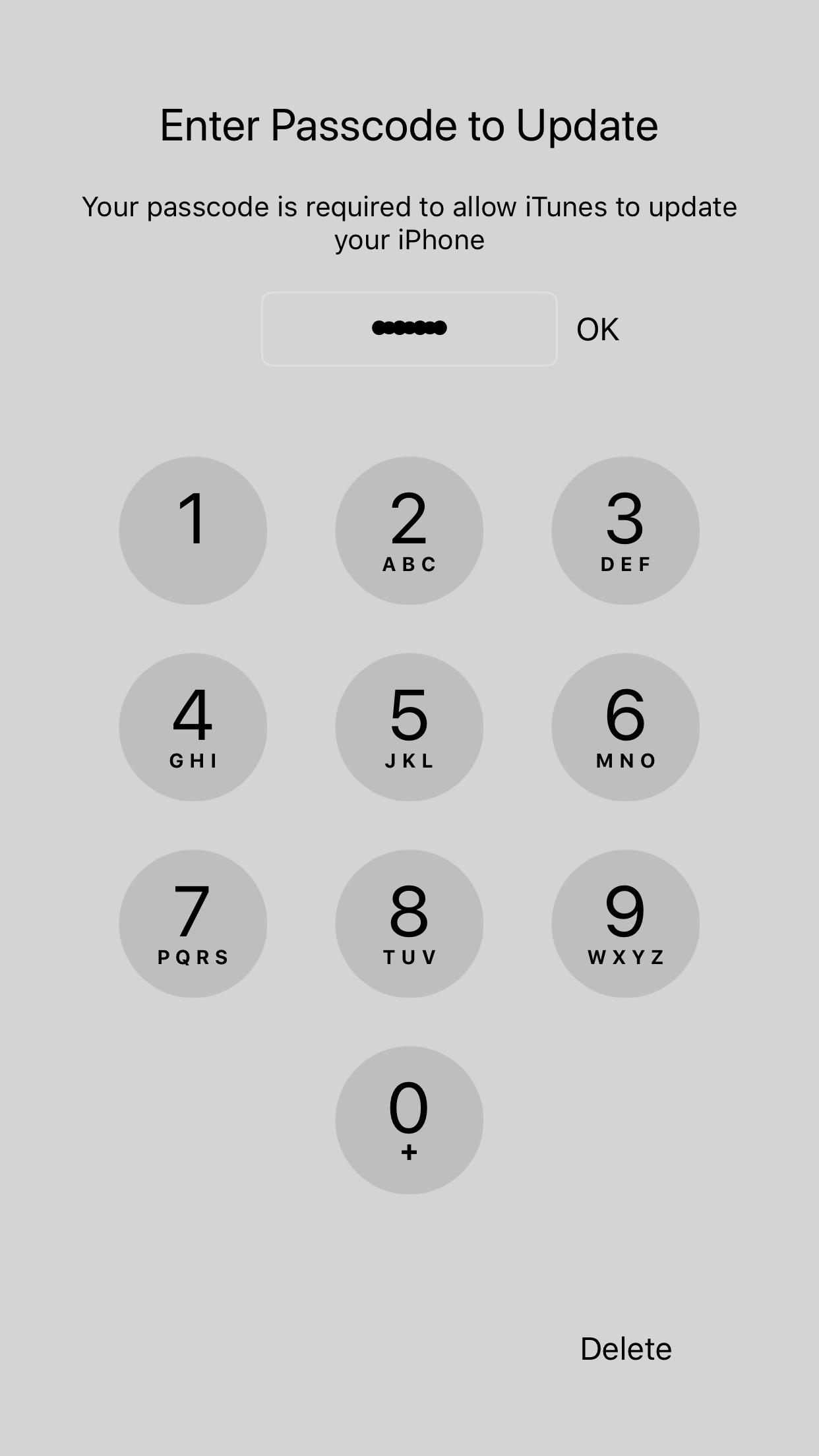 Bug Extra Dots After Inputting The 4th Number On A 5