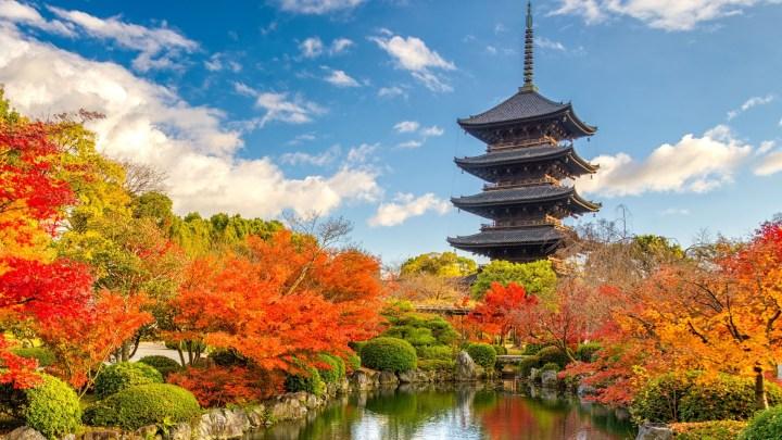 [1920×1080] Spring Pagoda