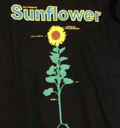 sunflower detailed diagram  [ 3024 x 4032 Pixel ]