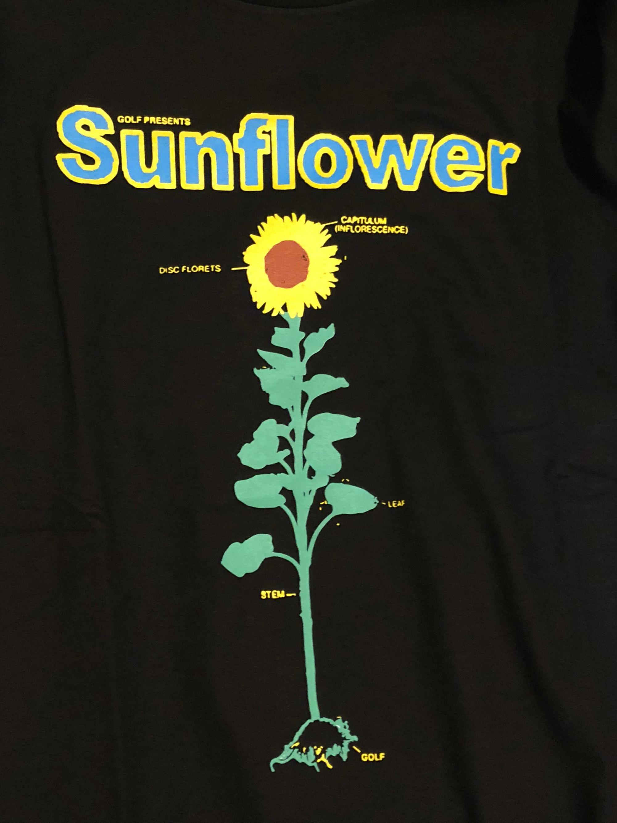 hight resolution of sunflower detailed diagram